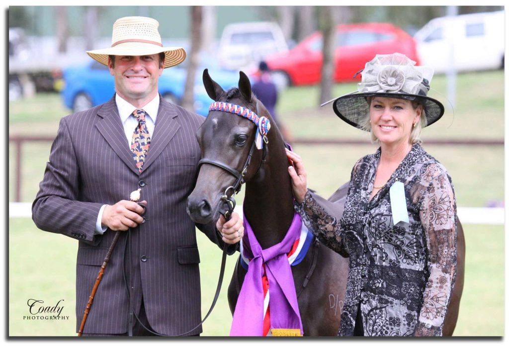 Galleyr Show Photo 18_Judging Appoint 2009