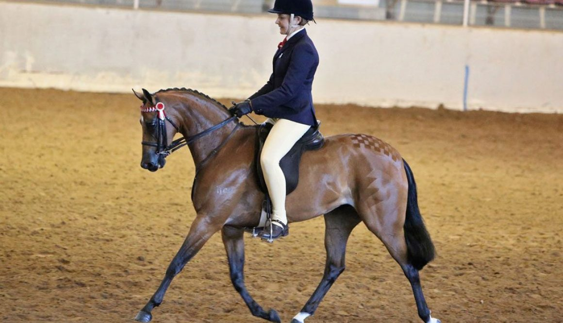 CP-Sweet-Embrace_PC14-trot_LM