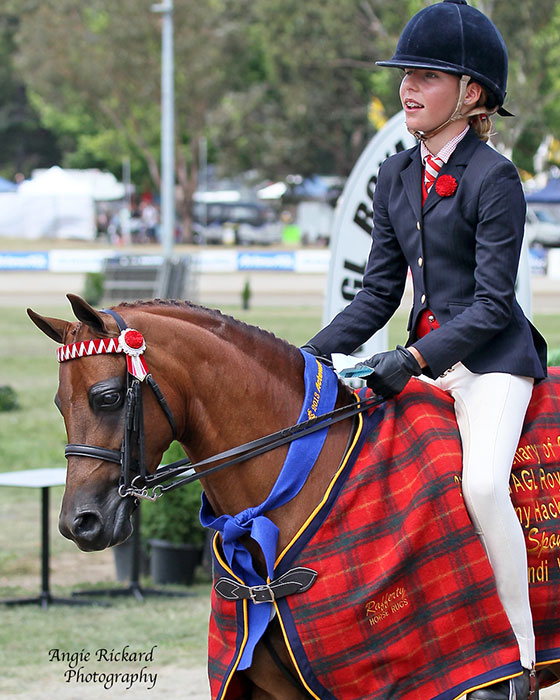 CP-Indulgence_Open-Mare-win-Canberra-Royal-_AR